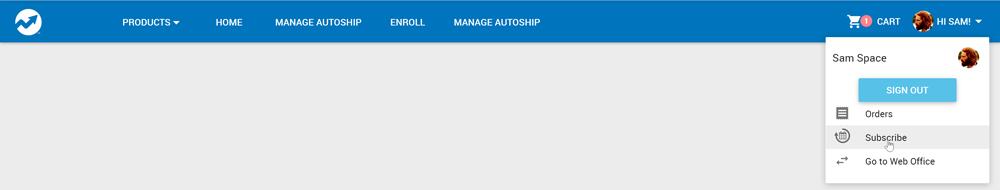 Profile dropdown menu